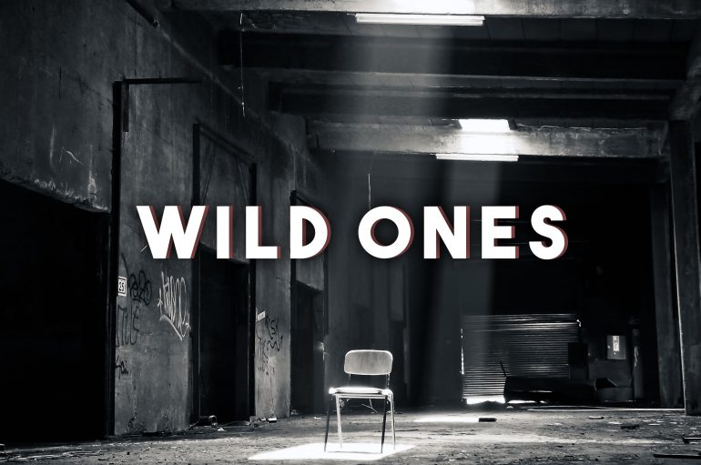 Davi Hemann Releases Remix of Flo Rida/Sia 'Wild Ones'