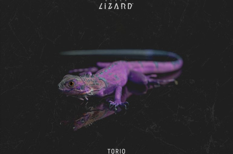 Torio Pushes the Boat Out With New Release 'Gravity'